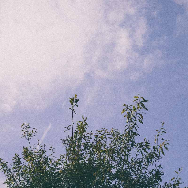 スクエアフォーマット写真 空
