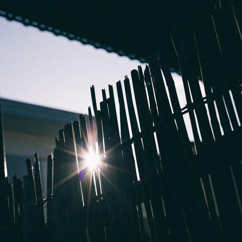 スクエアフォーマット写真 葦簀 光芒