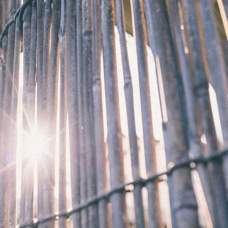 スクエアフォーマット写真 葦簀 光芒 ハイキー