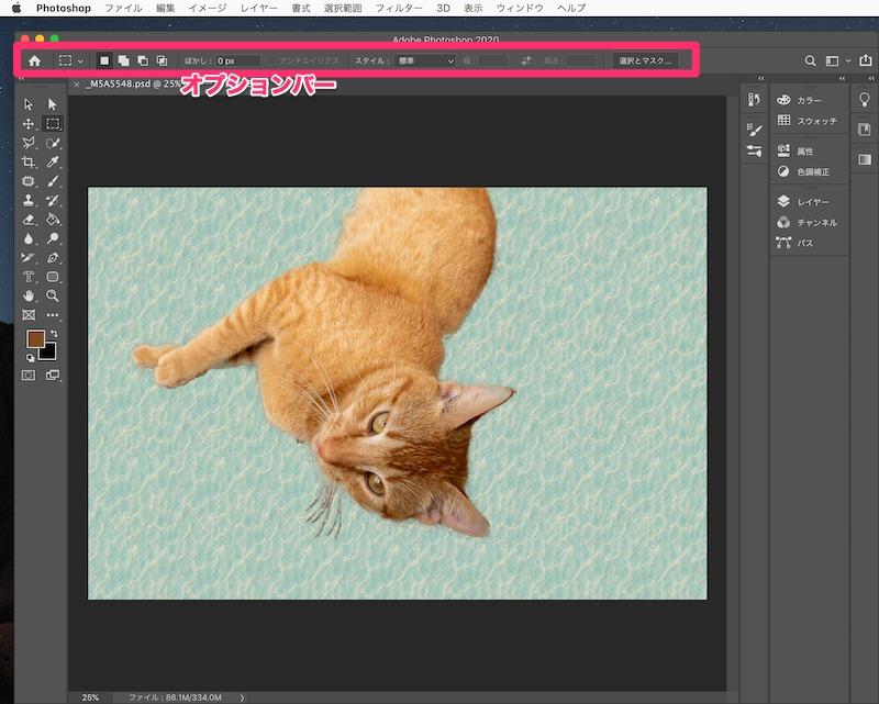 Photoshopオプションバー