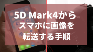 5DMK4_iPhone