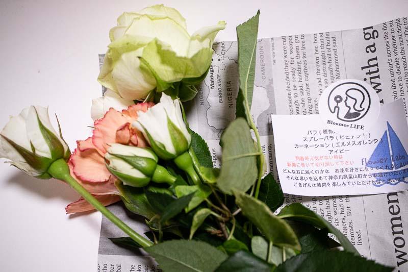 Bloomee Life 800円レギュラープラン例