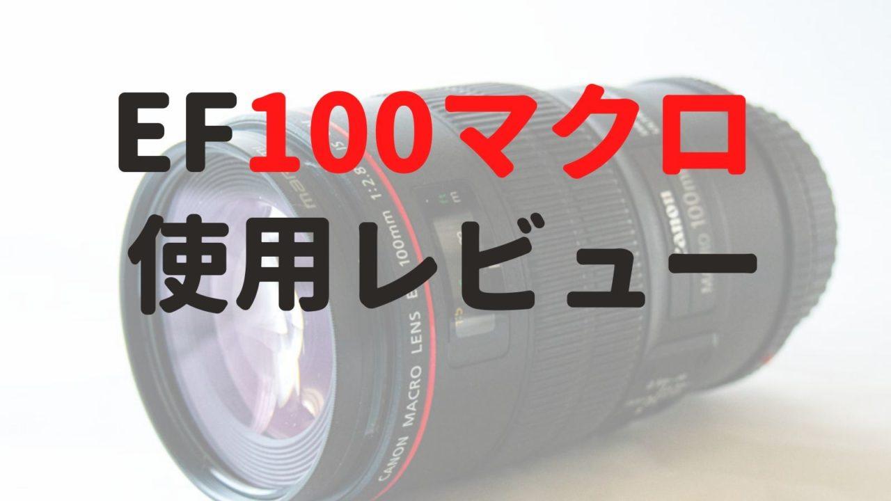 EF 100 Macro使用レビュー
