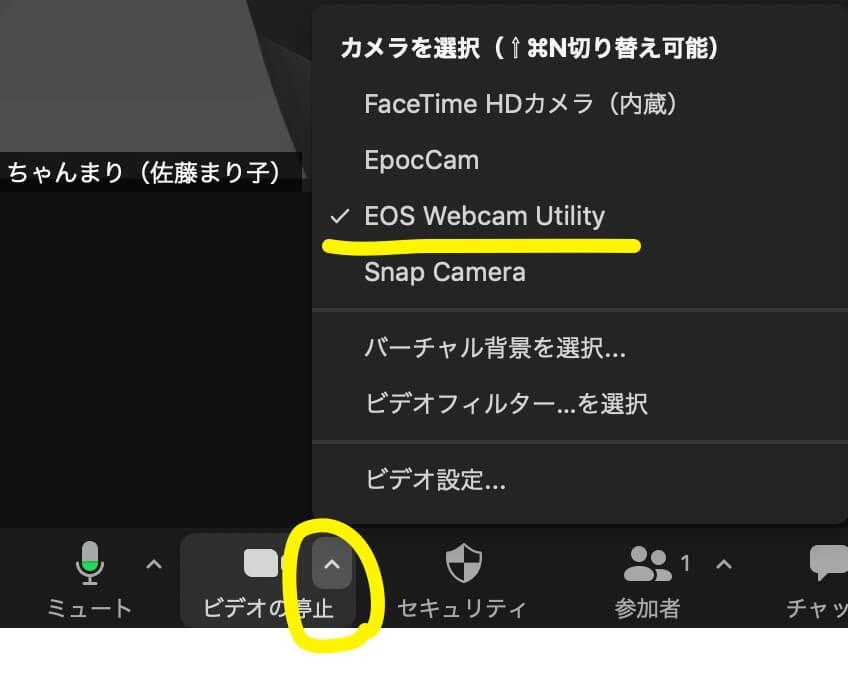 zoom- EOS Webcam Utility選択画面