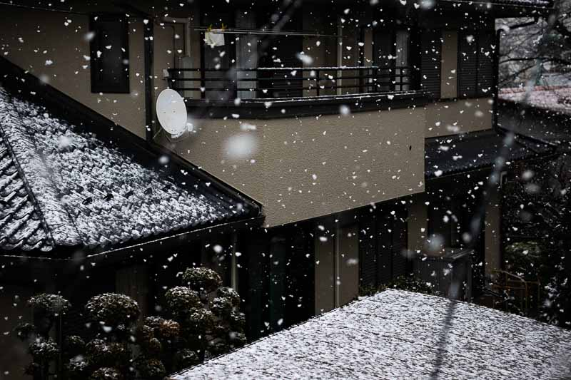 シグマ 56mm F1.4 Contemporaryレンズ(Canon EF-Mマウント用)で撮影した雪